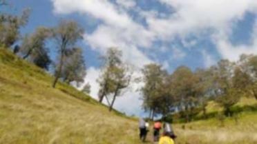 semeru-trekking-390